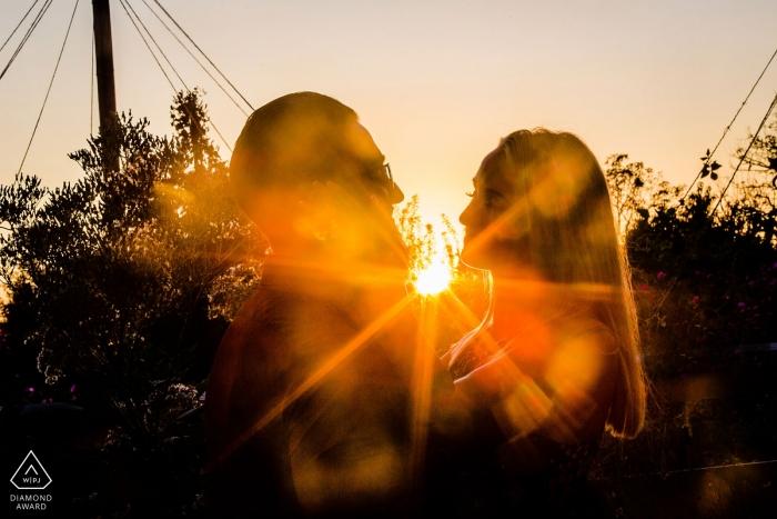 """Photographie de fiançailles à Pennsylvania Longwood Gardens - Citation de photographe: """"Le soleil se couchait et j'ai vu les étoiles dans leurs yeux. Littéralement."""""""