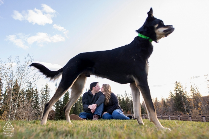 Dog frames couple sitting on hill during engagement session in Millcreek, Edmonton, Alberta