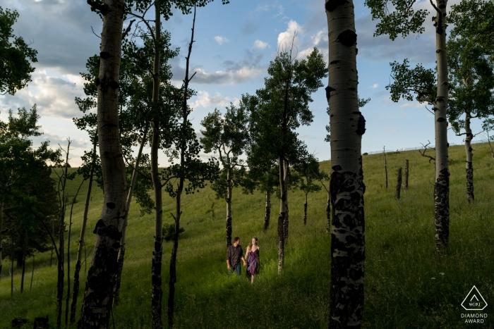 Paare, die in den Espenbäumen bei Sonnenuntergang wandern. Verlobungsfotograf für Woodland Park.