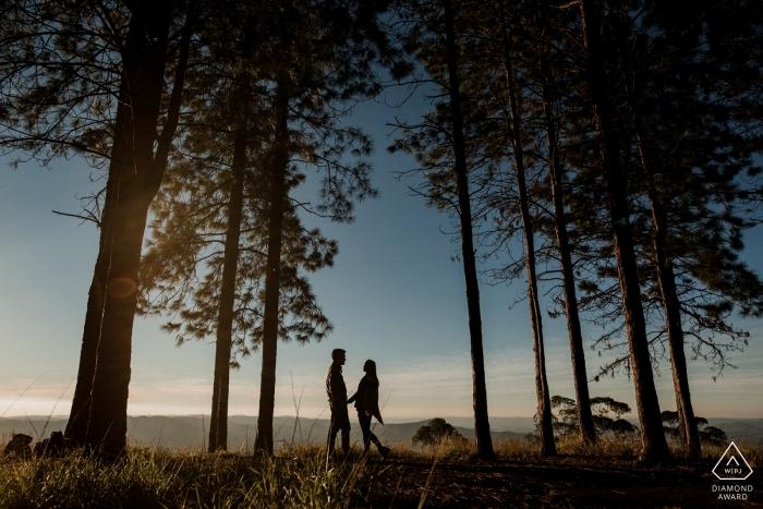 Engaged couple in the tall trees at sunset | Poços de Caldas - Minas Gerais PreWedding Photographer