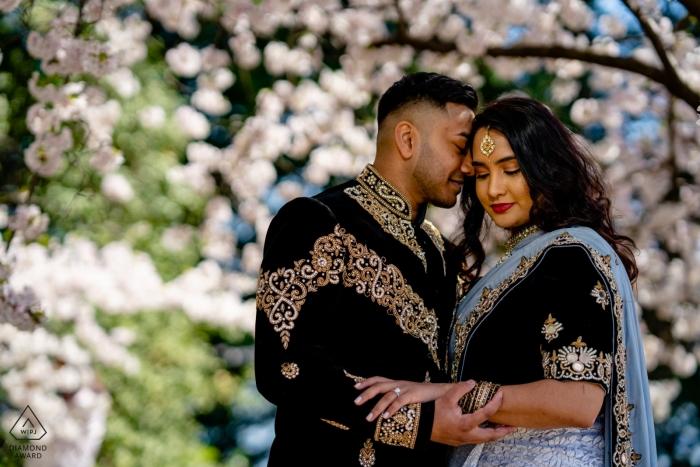 Ein Paar umarmt sich in der Nähe der Kirschblüten. Verlobungsphotographie vom Gezeiten- Becken, Washington DC