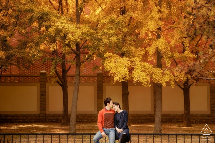 Beijing Pre Wedding Picture Session - Portrait contains:fall, colors, leaves, trees