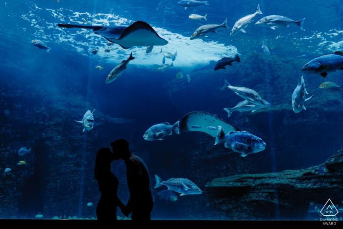 Engaged couple portrait with Cape Town Aquarium background