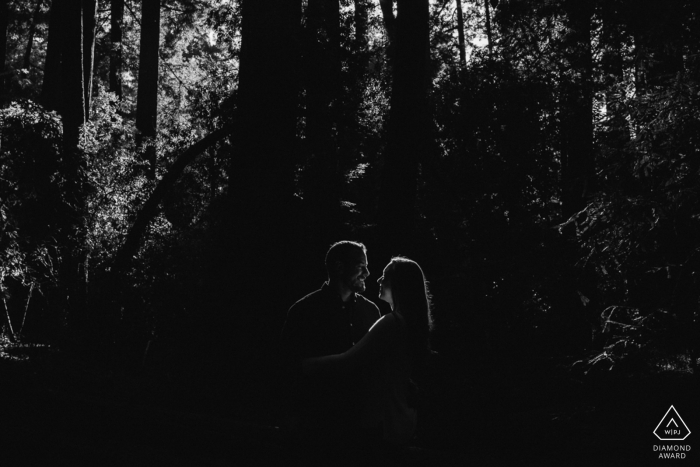 Henry Cowell Redwoods State Park Engagement Photo | Couple backlit by the sun