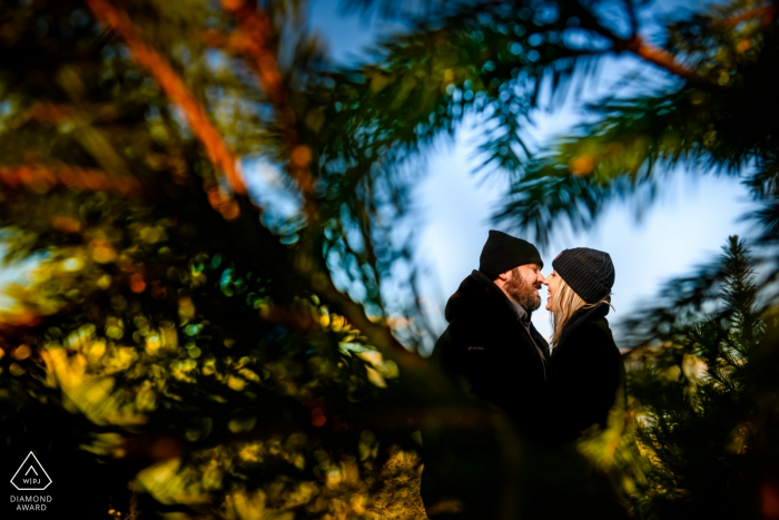 Giamarese Farm Christmas Tree Shopping and Kissing during Engagement Portrait Session