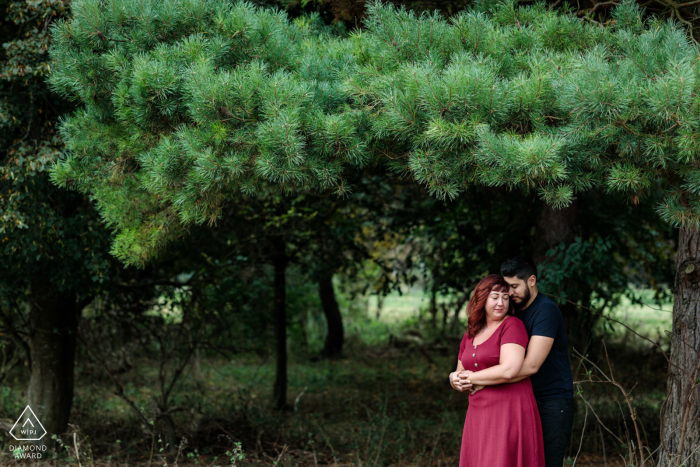Bridge, Kent, UK pre wedding image - The couple cozy up under a pine tree in the countryside