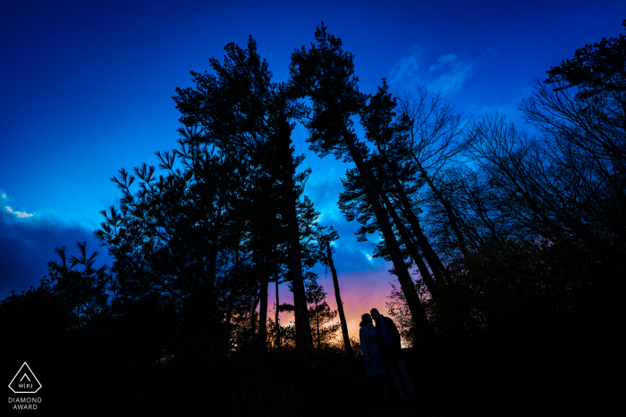 Castle Hill on the Crane Estate - Ipswich, Massachusetts Engagement Photography   Sunset Couple Portrait in the Trees