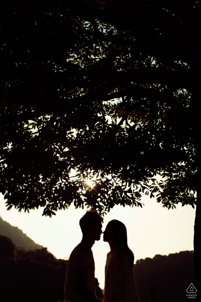 Guangzhou Silhouette portrait of an engaged couple kissing under big trees