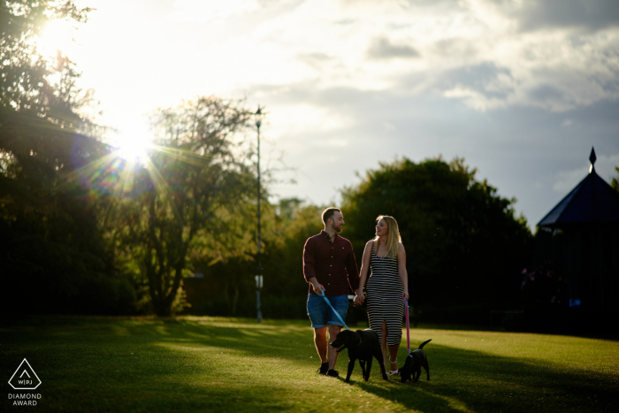 Hampshire engagement shoot with a couple walking a dog in the sun at the park