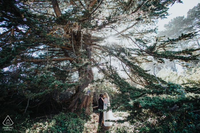 Fitzgerald Marine Reserve, Moss Beach, California couple surrounded in The love of light during engagement photo session