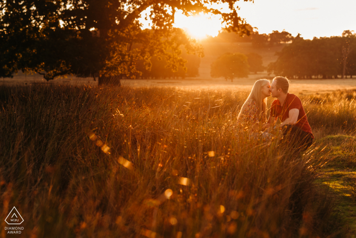 Outdoor afternoon engagement picture session of couple in tall grasses backlit by beautiful golden light in Petworth Deer Park, Petworth, West Sussex, England