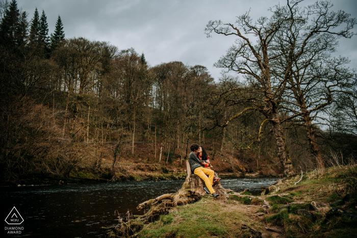 Bolton Abbey, Yorkshire, UK Engagement portrait shoot image montrant le couple s'embrassant alors qu'il était assis sur une souche d'arbre
