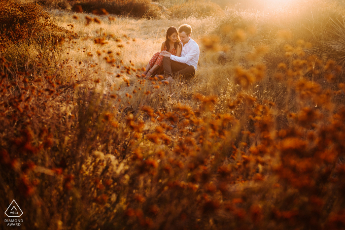 Los Angeles, California pre wedding photography of a couple sitting in an open field in the afternoon sunlight