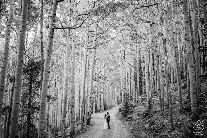 Scottsdale woods couple portrait in black and white