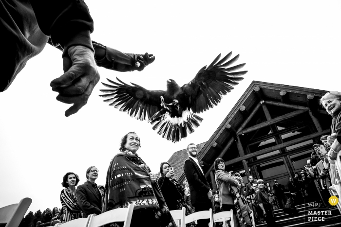 Boulder wedding photographer captured this black and white image of a falconer and his falcon outside of a log cabin during the wedding ceremony