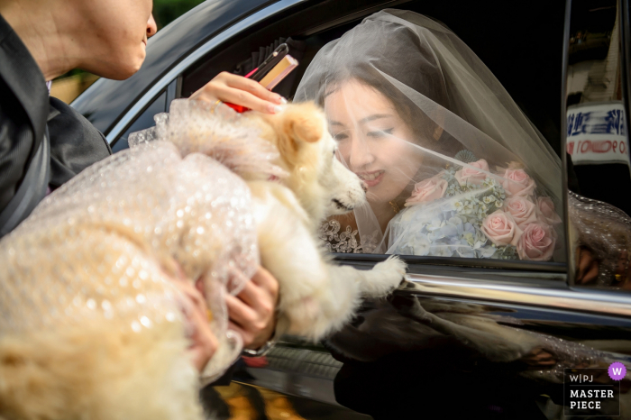 Taiwan bride with her dog that is dressed up for the wedding