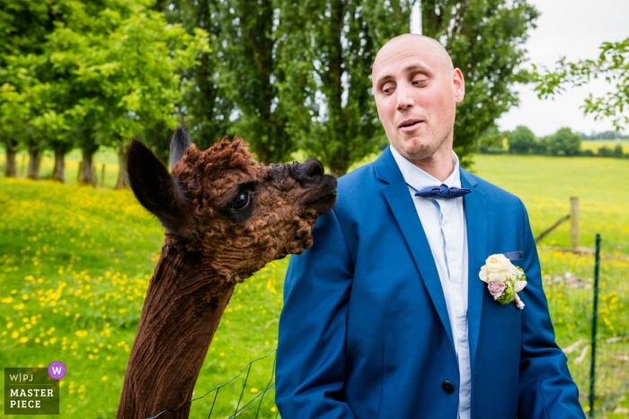 Cotes-d'Armor wedding photograph - humor photo of groom with great expression