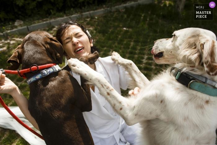 Ankara, Türkei - Pia Sera Foto der Braut, die sich nach ein paar Wochen mit ihren Hunden trifft