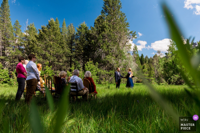 A bride and groom get married in a meadow with their loved ones looking on in an informal and intimate elopement ceremony in South Lake Tahoe, CA