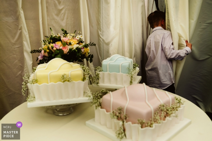 Nunsmere Hall, Cheshire wedding reception photos of cakes / young guest