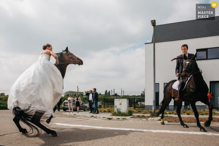 Wedding photography in the street in front of the Groom and bride's house | Bride and groom are getting ready to go to the city hall by horse, and try to comfort their horses.