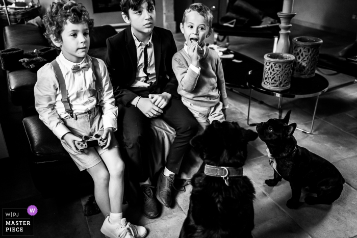 Wedding photographer from Wallonie | Breakfast time for the kids and dogs