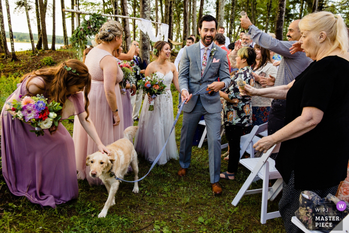 A bride and groom exit their ceremony with their dog at their wedding in Lamoine, Maine