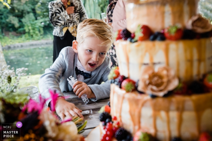 Netherlands Reception venue photography -Little boy wants to 'attack' wedding cake