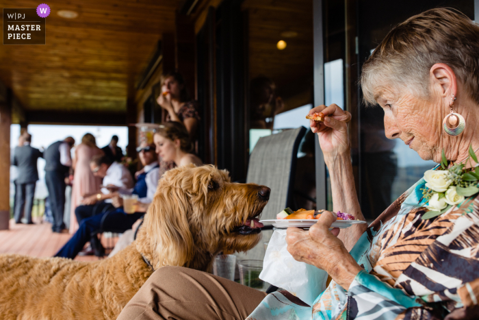 Montana home wedding photography from Philipsburg of grandma taunting a dog with hors d'ouvres