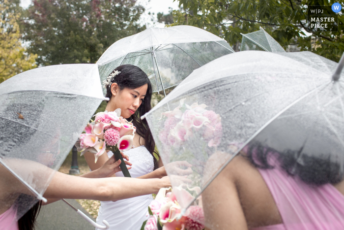 Sorting out the bouquets in the rain at the Victoria Park in Kitchener, Ontario