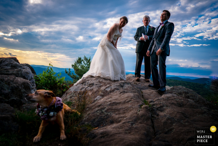Shenandoah National Park wedding image of a couple laughing at their dog during their vows at Point Overlook