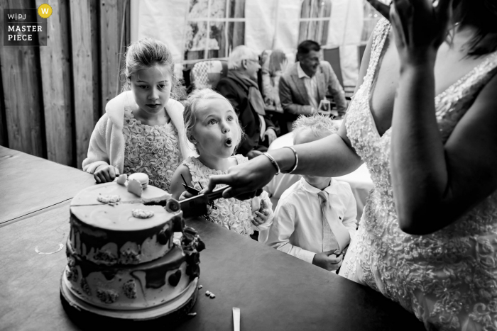 Noord Brabant wedding photography at home showing kids at the cutting of the cake