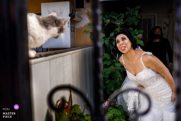 An Istanbul wedding photographer caught this funny moment at the Bride Home in Gaziemir, Turkey of the bride and her cat at traditional Turkish receiving bride ceremony