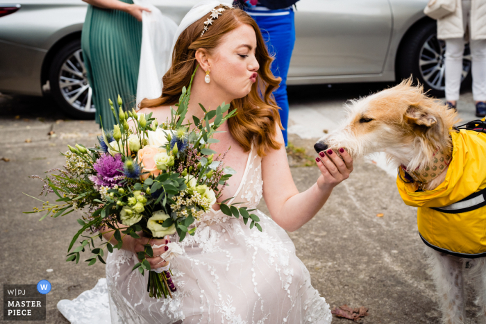Dublin wedding reportage photography of a Leinster Bride with her dog and flowers at Dublin city centre