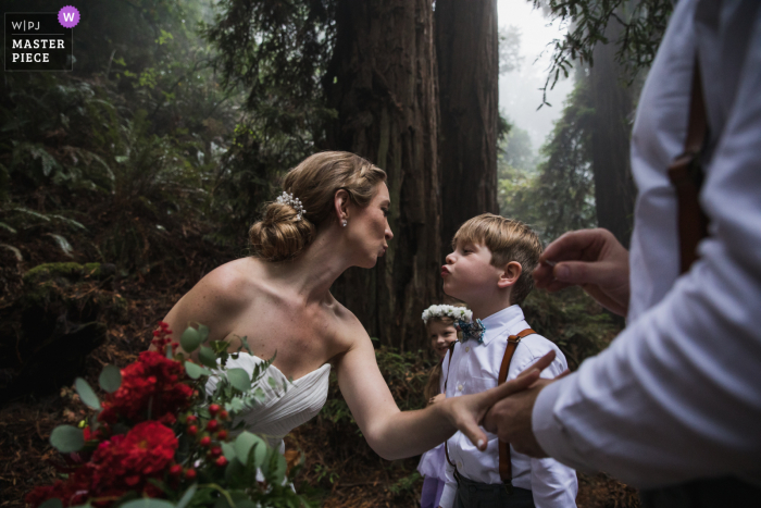 Wedding photography from a ceremony in a majestic redwood grove in Marin County, California. The forest was enveloped in a mystical fog layer