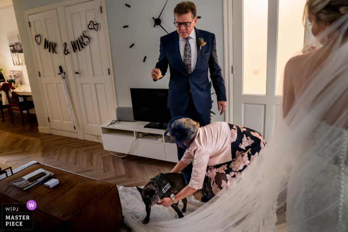 Netherlands wedding image of  the parents of the bride, who brought their dog, is making a discovery trip on the veil
