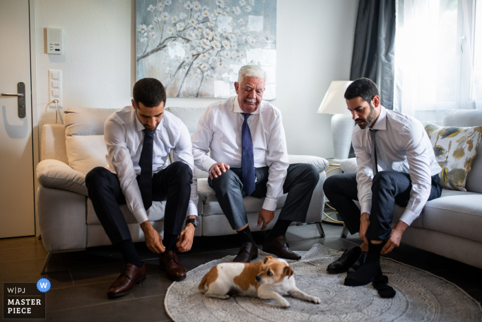 Zurich wedding photograph of the groom, his father, and his brother and their special dog getting ready
