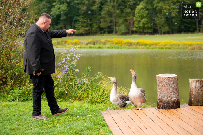 Pennsylvania wedding photography from the Westminster Preserve, Armstrong Farms, Saxonburg created as A guest shoos away 2 notoriously aggressive geese moments before the ceremony began