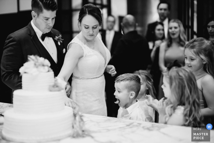 A top San Antonio wedding photographer at the Hotel Emma captured this picture ofTexas Kids being kids during a cake cutting