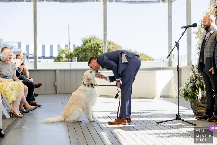 Popponesset Inn, Mashpee indoor marriage event award-winning image showing the groom kisses his dog before the ceremony. The world's best wedding picture competitions are featured via theWPJA