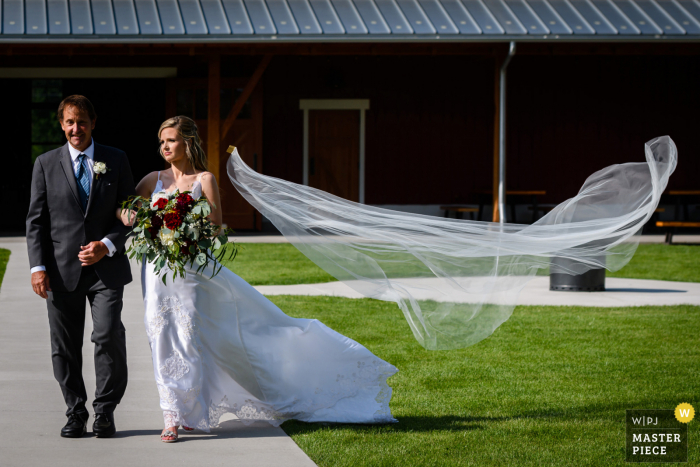 Sweetheart Winery, Loveland nuptial day award-winning image. The wind blew fiercely and took the bride's veil eventually way up high into a tree.