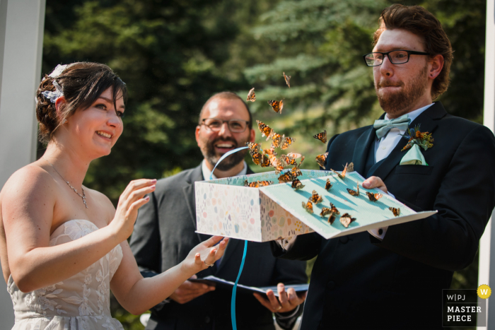 Wedgewood Weddings, Mountain View marriage ceremony award-winning image showing The bride and groom releasing butterflies from a box - from the world's best wedding photography competitions presented by the WPJA
