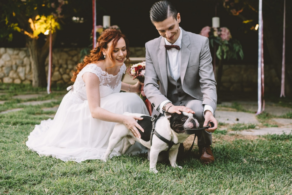 Photo of a couple petting a dog at their Ktima Gregou, Athens, Greece wedding