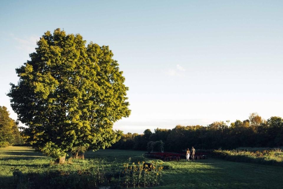 Shady Lane Farm, New Gloucester, ME Mariage Photographie de couple marchant