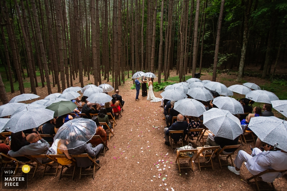 Roxbury Barn, Roxbury NY Wedding Photographer - Image of Rain during the outdoor ceremony