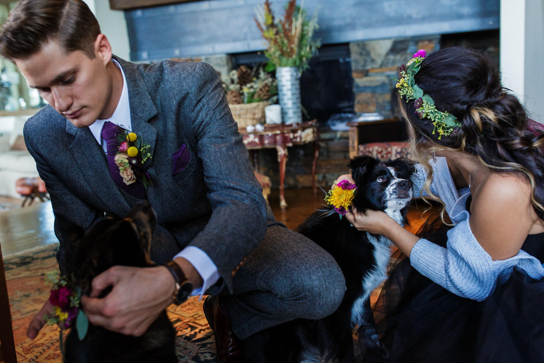 Tahoe Elopement Image | The wedding couple's two dogs were an important part of the wedding day