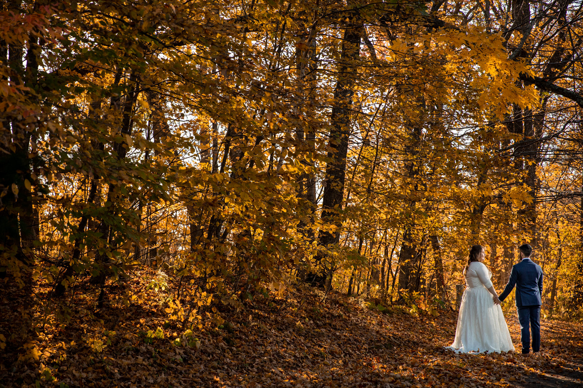 Balsam Lake, Wisconsin - Couple walking in the fall colors during a private portrait session.