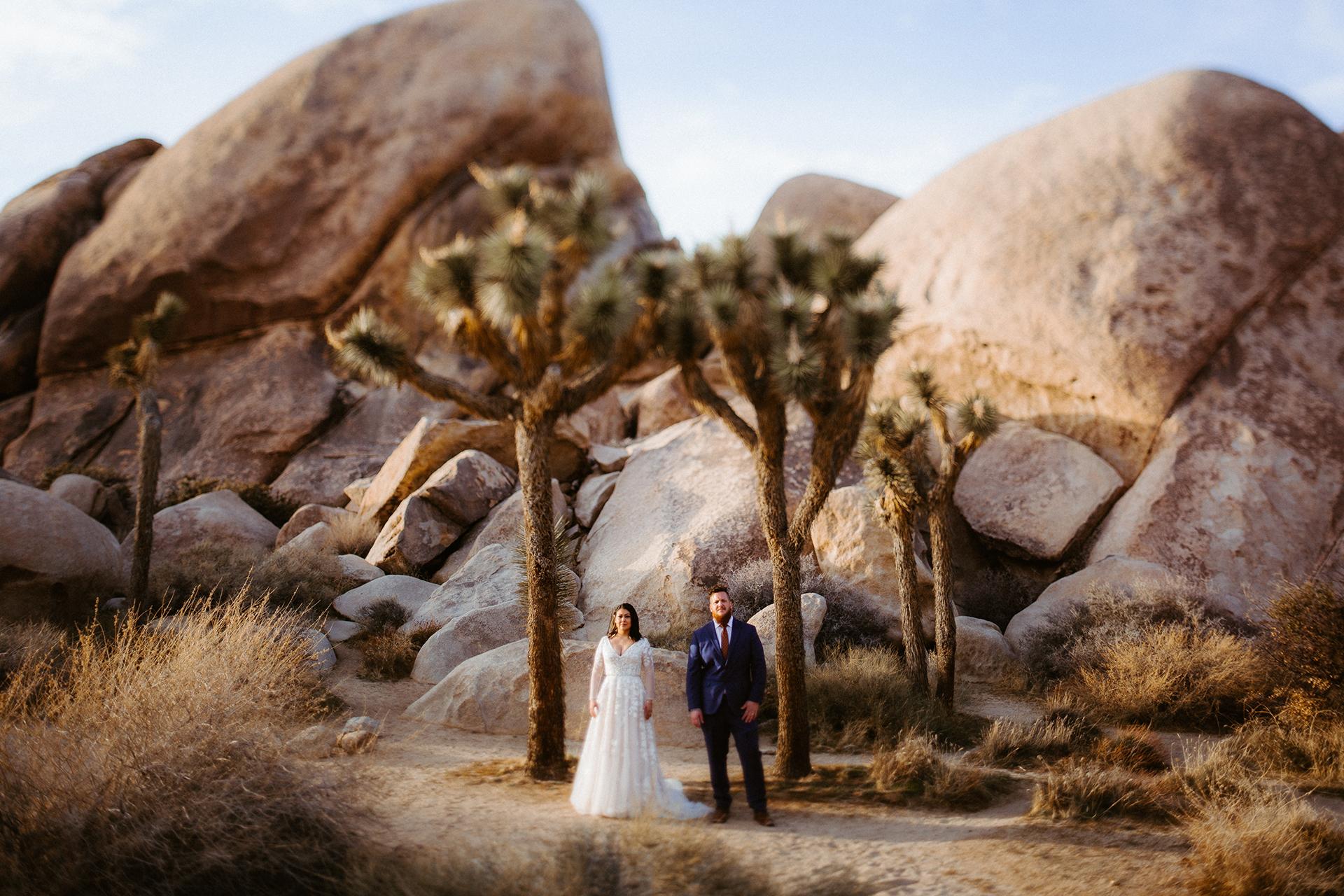 Cap Rock, Joshua Tree, portrait de couple elopement Californie | Prendre une photo du couple dans le cadre de l'icône Joshua Tree.