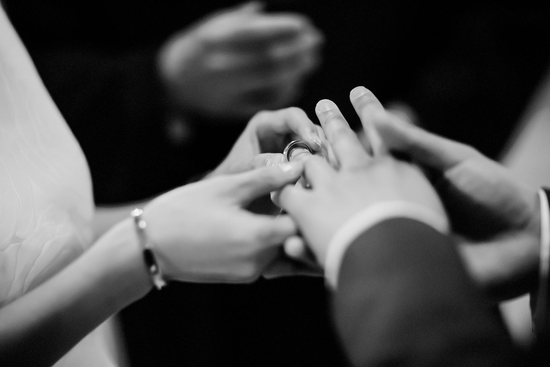Fotografía del matrimonio civil del ayuntamiento de San Francisco   La pareja se puso los anillos y fueron oficialmente marido y mujer.