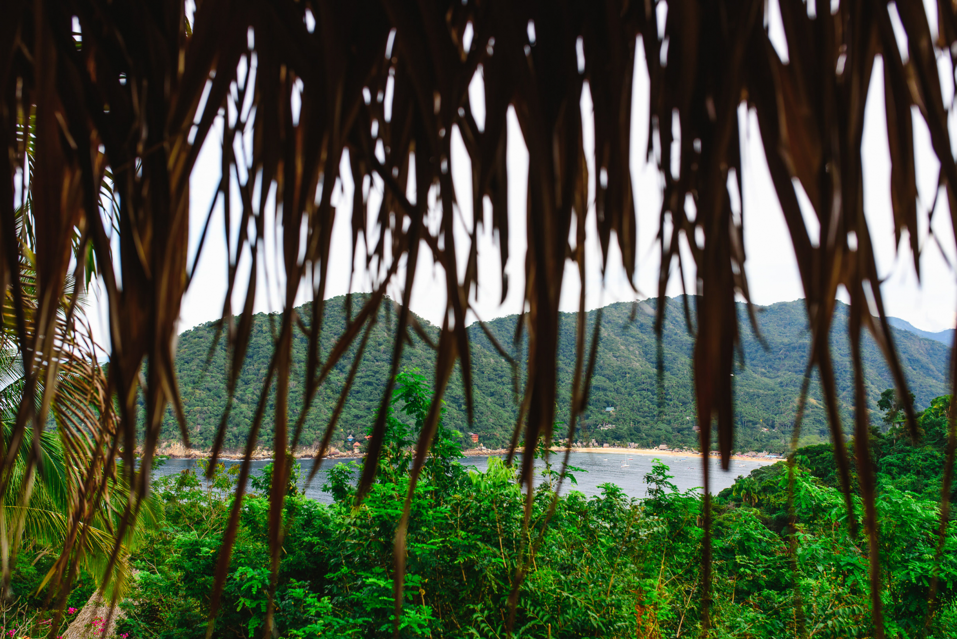 Yelapa, Mexico Wedding Elopement Photography | Peeking out from beneath palm fronds is a beautiful view of the fishing village, Yelapa, from Verana